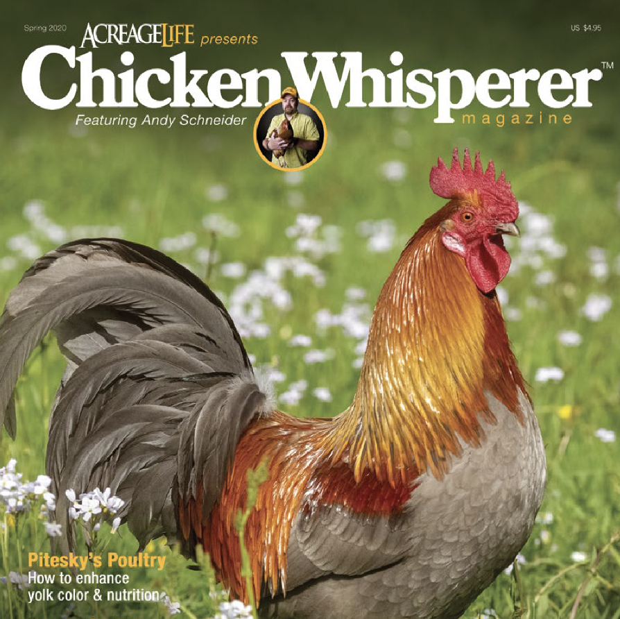 CW_Spring_2020_coverWesite