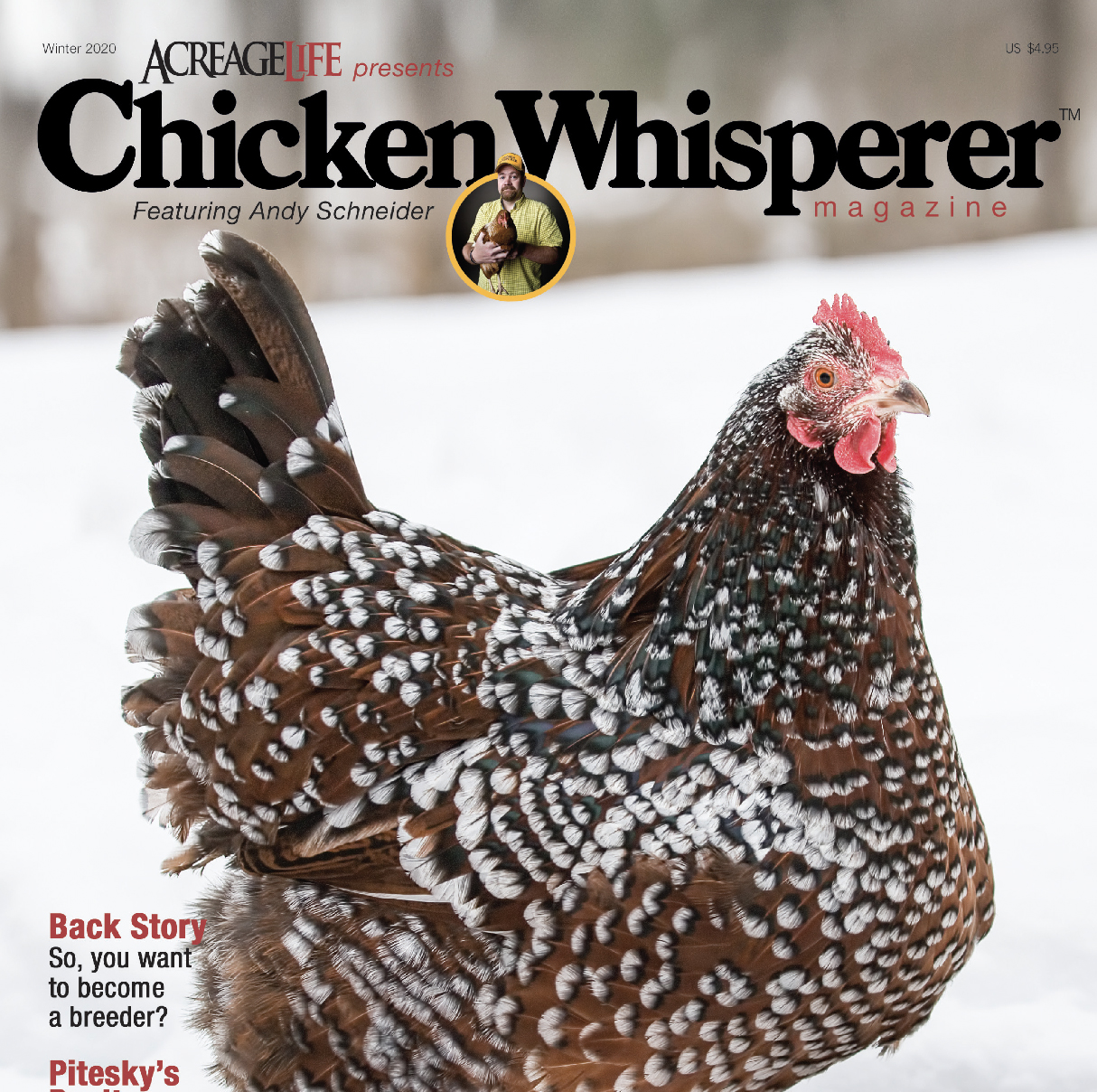 Chicken Whisperer Magazine Your Source For All Things Chickens